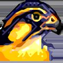 asqifman avatar